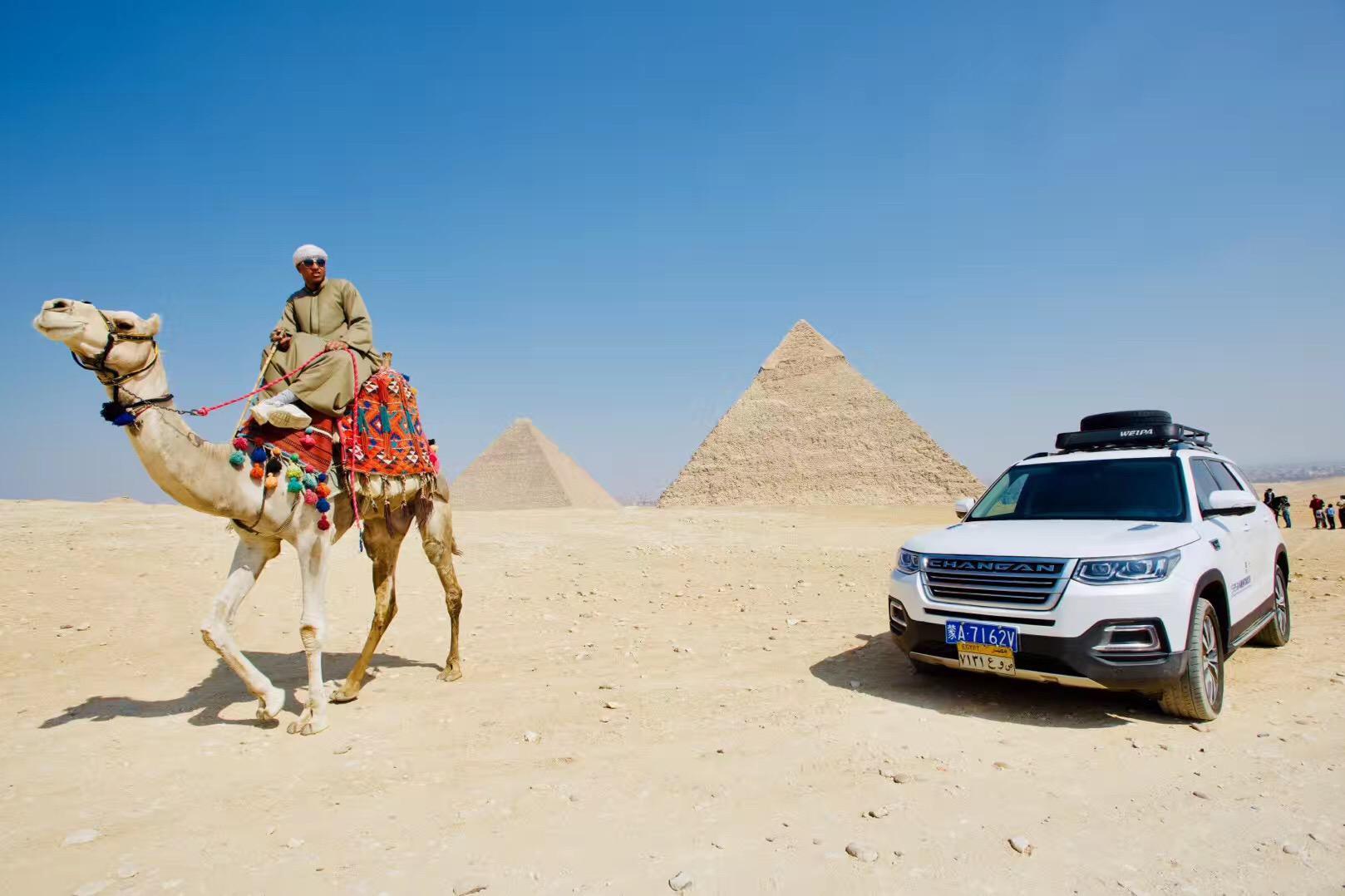埃及 图8.jpg